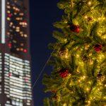 クリスマスシーズンのオフィス